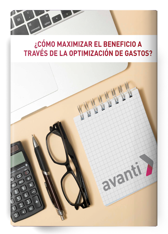 Ebook_como-maximizar-el-beneficio-a-traves-de-la-optimizacion-de-gastos