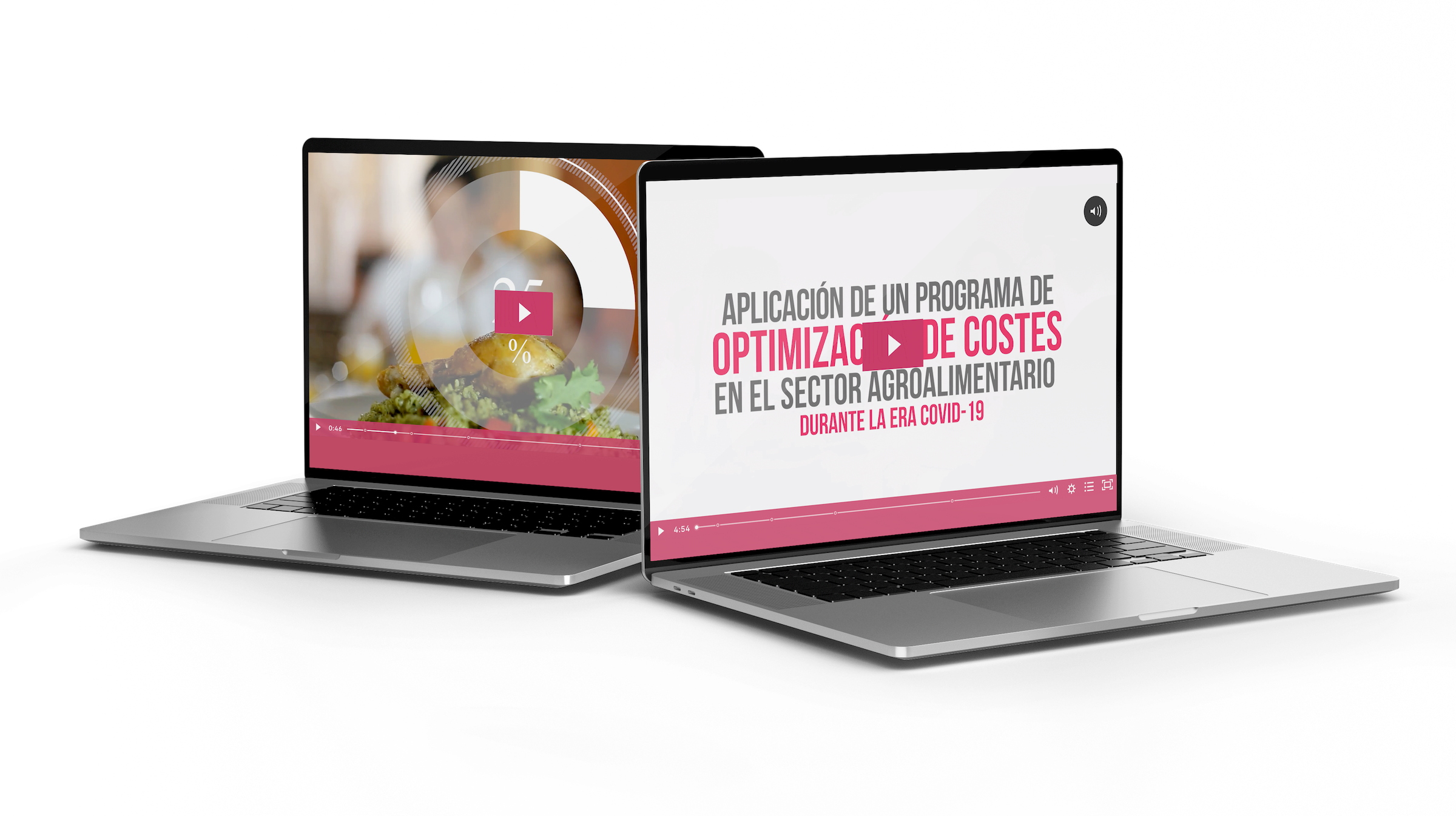 Videoguía: Aplicación de un programa de optimización de costes en el sector Agroalimentario